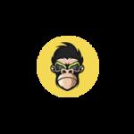 Crypto-monkey